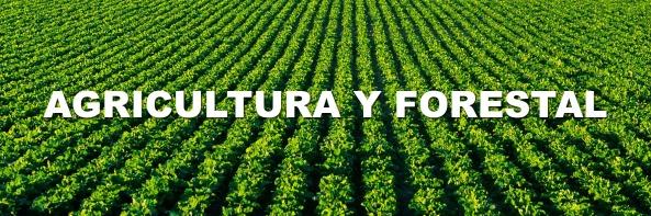 Agricultura-y-forestal-banner-guia-de-jaen