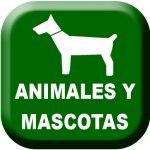 Animales-y-Mascotas